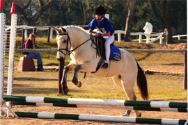 KZN Pony Club